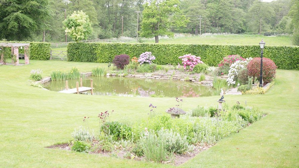 Pond Garden Design